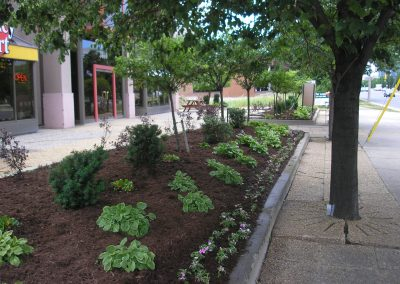landscaping039